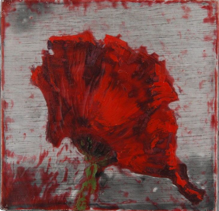 Poppies_Field of Rememberance #1
