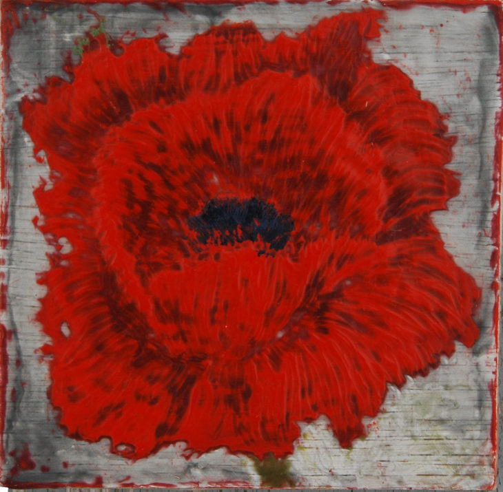 Poppies_Field of Rememberance #6