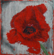 Poppies_Field of Rememberance #8